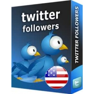 TWITTER FOLLOWERS INTERNATIONAL
