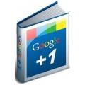 Google + Votes
